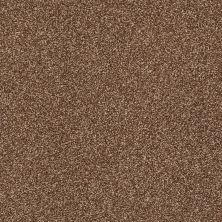 Shaw Floors Value Collections Super Buy 45 Henna 00704_E9599