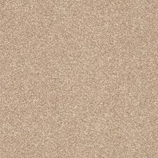 Shaw Floors Value Collections Super Buy 55 Golden Sands 00102_E9600