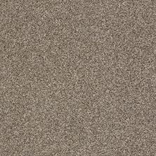 Shaw Floors Value Collections Super Buy 55 Dappled 00501_E9600
