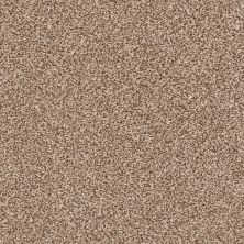 Shaw Floors Value Collections Super Buy 55 Sooty Air 00700_E9600