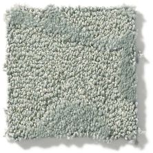 Shaw Floors Foundations Lucid Ivy Pewter 00501_E9607