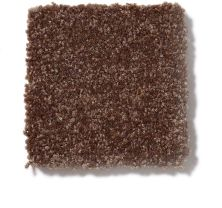 Shaw Floors Value Collections Passageway I 15 Net Mocha Chip 00705_E9620
