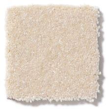 Shaw Floors Value Collections Passageway II 15 Net Cream 00101_E9621