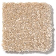 Shaw Floors Value Collections Passageway II 15 Net Sugar Cookie 00105_E9621