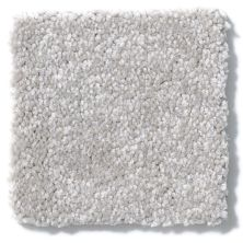 Shaw Floors Value Collections Passageway II 15 Net Masonry 00110_E9621