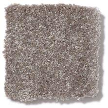 Shaw Floors Value Collections Passageway II 15 Net Field Stone 00111_E9621