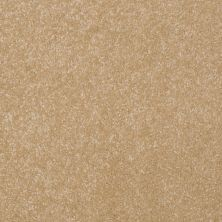 Shaw Floors Value Collections Passageway II 15 Net Butter 00200_E9621