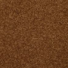 Shaw Floors Value Collections Passageway II 15 Net Camel 00204_E9621
