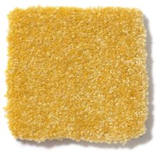 Shaw Floors Value Collections Passageway II 15 Net Daffodil 00205_E9621