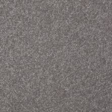 Shaw Floors Value Collections Passageway II 15 Net Pewter 00501_E9621
