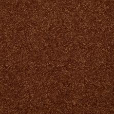 Shaw Floors Value Collections Passageway II 15 Net Gingerbread 00602_E9621