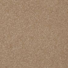 Shaw Floors Value Collections Passageway II 15 Net Sea Grass 00700_E9621