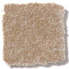 Shaw Floors Value Collections Passageway II 15 Net Sea Grass 00700_E9621