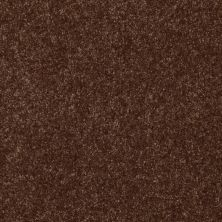 Shaw Floors Value Collections Passageway II 15 Net Mocha Chip 00705_E9621