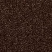 Shaw Floors Value Collections Passageway II 15 Net Walnut 00706_E9621