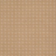 Shaw Floors Wolverine Vii Natural Grain 00103_E9622