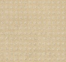 Shaw Floors Wolverine Vii Honeycomb 00142_E9622
