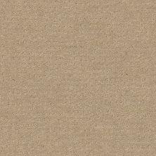 Shaw Floors Wolverine Vii Espresso 00192_E9622