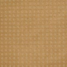 Shaw Floors Wolverine Vii Wheat 00201_E9622
