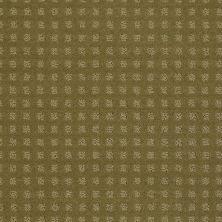 Shaw Floors Wolverine Vii Aloe 00300_E9622