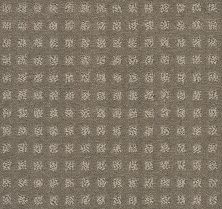Shaw Floors Wolverine Vii Soft Clay 00751_E9622