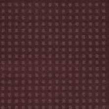 Shaw Floors Wolverine Vii Wisteria 00900_E9622