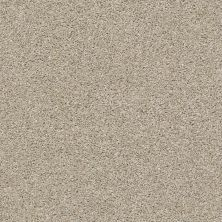 Shaw Floors Proposal Grecian Stone 00172_E9623