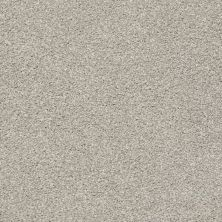 Shaw Floors Proposal Pearl Smoke 00175_E9623