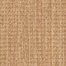 Shaw Floors Natural Boucle 15 Sisal 00200_E9634