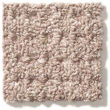 Shaw Floors Foundations Natural Boucle 15 Slate 00500_E9634