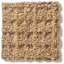 Shaw Floors Foundations Natural Boucle 15 Basketry 00700_E9634
