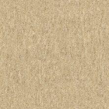 Shaw Floors Foundations Natural Balance 15 Jute 00102_E9635