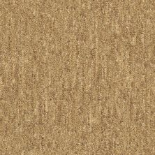 Shaw Floors Natural Balance 15 Sisal 00200_E9635