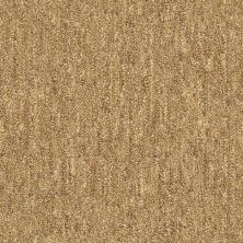 Shaw Floors Foundations Natural Balance 15 Sisal 00200_E9635
