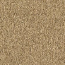 Shaw Floors Natural Balance 15 Wicker 00701_E9635