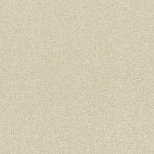 Shaw Floors Bellera Basic Rules Linen 00110_E9639