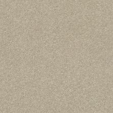 Shaw Floors Bellera Basic Rules Vicuna 00111_E9639