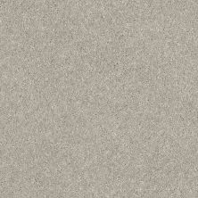 Shaw Floors Bellera Basic Rules Platinum 00500_E9639