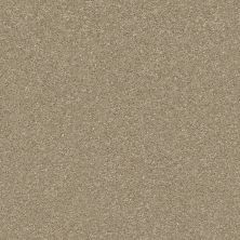 Shaw Floors Bellera Basic Rules Khaki 00700_E9639