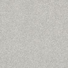 Shaw Floors Bellera Just A Hint II Mist 00107_E9641