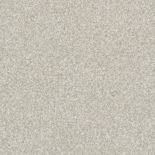 Shaw Floors Bellera Just A Hint II Platinum 00500_E9641