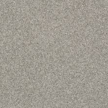 Shaw Floors Bellera Just A Hint II Sterling 00501_E9641