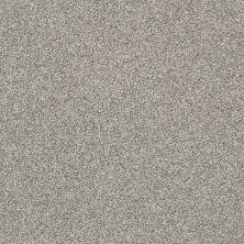 Shaw Floors Bellera Just A Hint II Sterling 00501_E9641