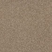Shaw Floors Bellera Just A Hint II Bronze 00602_E9641