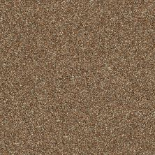 Shaw Floors Bellera Points Of Color II Bronze 00602_E9643