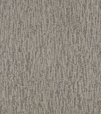 Shaw Floors Bellera Obvious Choice Sterling 00501_E9648
