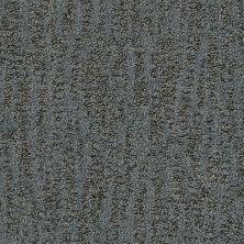Shaw Floors Bellera Obvious Choice Steel 00505_E9648