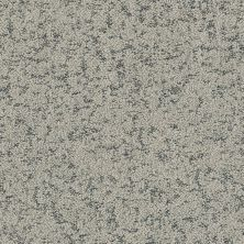 Shaw Floors Bellera Make Your Mark Sterling 00501_E9649