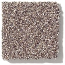 Shaw Floors Value Collections Platinum Texture Accents Net Granite 00781_E9665