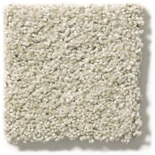 Shaw Floors Value Collections Proposal Net Fossil 00170_E9669